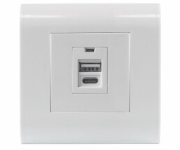 Intellinet 2-Port USB-A & USB-C Wall Outlet with...