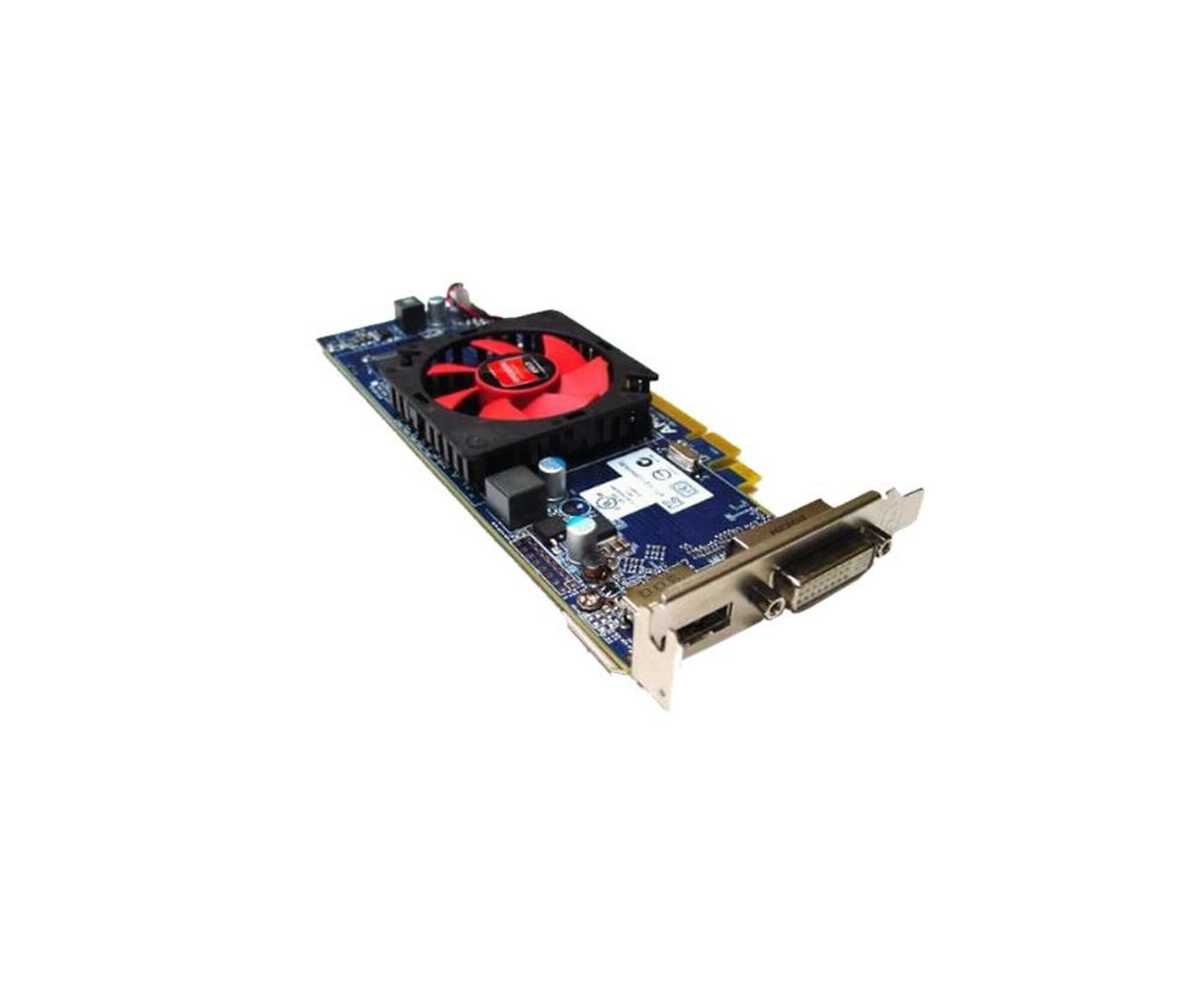 AMD Radeon HD 6450 - Grafikadapter - Radeon HD 6450 - PCI Express 2.1 x16 - Low profile - 1 GB DDR3 - M0KV6