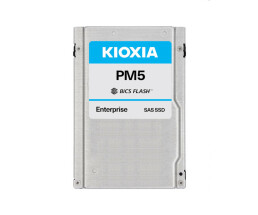 Kioxia PM5-R Series KPM51RUG960G - 960 GB SSD - intern -...