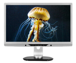 Philips Brilliance P-line 221P3LPYES - LCD-Display - TFT...