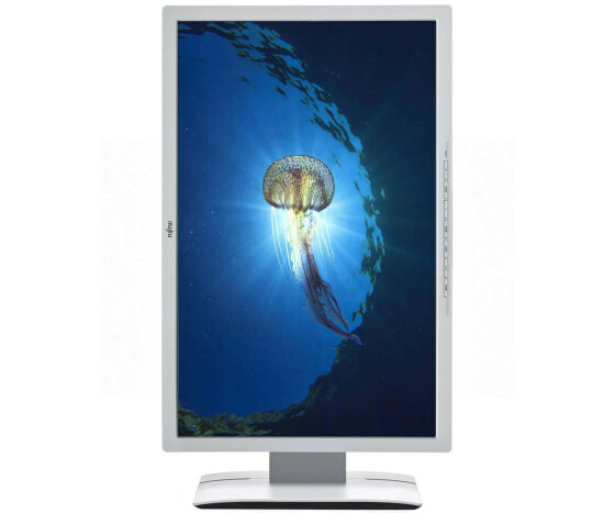 Fujitsu Business Line P24W-6 LED - LED-Monitor - 61 cm (24) - 1920 x 1200 Full HD