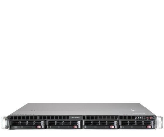 BLUECHIP SERVERline R41302s 850238